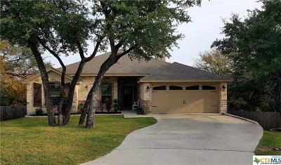 Belton Single Family Home For Sale: 2502 Amber Forest Trail