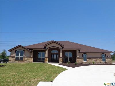 Kempner Single Family Home For Sale: 876 Cr 4772