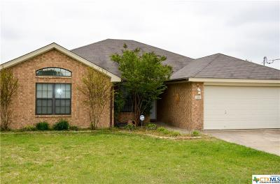 Kempner Single Family Home For Sale: 326 County Road 4711