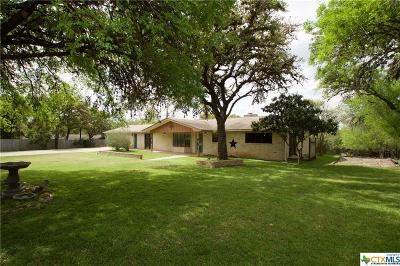 San Marcos Single Family Home For Sale: 940 Willow Creek