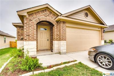 San Marcos Single Family Home For Sale: 178 Lake Glen