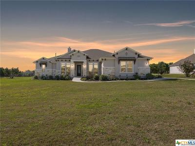 Williamson County Single Family Home For Sale: 309 Bold Sundown
