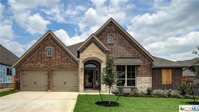 San Antonio Single Family Home For Sale: 1906 Wilby Lane