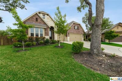 San Antonio Single Family Home For Sale: 3802 Ricegrass