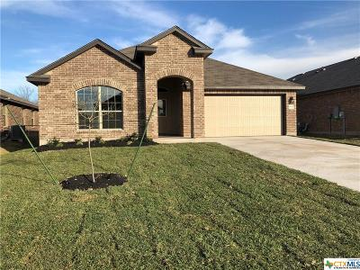 Bell County Single Family Home For Sale: 6507 Ambrose