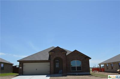 Bell County Single Family Home For Sale: 200 Christopher