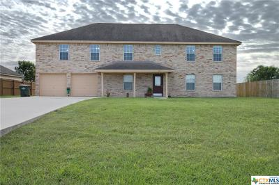 Seguin Single Family Home For Sale: 137 Castlewood