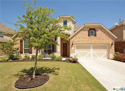 Buda TX Single Family Home For Sale: $335,000