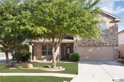 Cibolo Single Family Home For Sale: 329 Sorenstam Way
