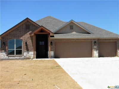 Bell County Single Family Home For Sale: 9602 Bozon Hill
