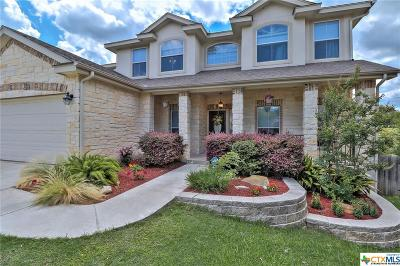 New Braunfels TX Single Family Home For Sale: $365,000