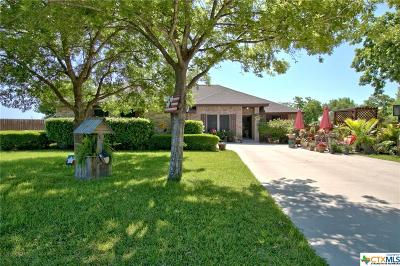 Seguin Single Family Home For Sale: 245 Red Fox