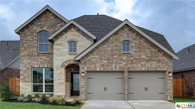 New Braunfels TX Single Family Home For Sale: $341,900
