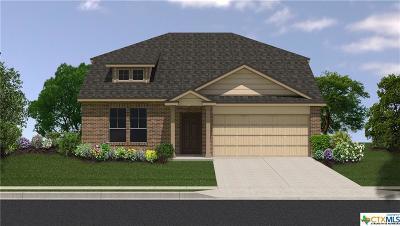 Killeen TX Single Family Home For Sale: $174,650