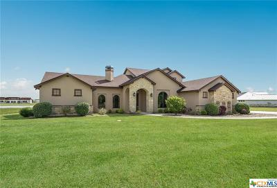Guadalupe County Single Family Home For Sale: 925 River Ranch Circle