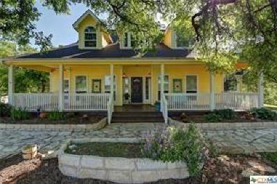 Cedar Park Single Family Home For Sale: 554 County Road 272