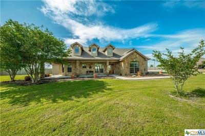 Seguin Single Family Home For Sale: 1765 Link Road