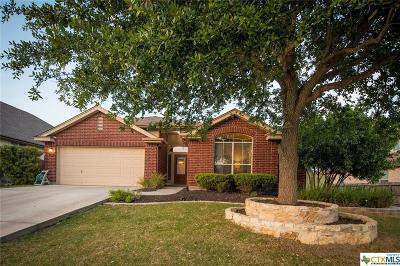New Braunfels Single Family Home For Sale: 2417 Angelina