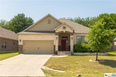 Belton Single Family Home For Sale: 206 Chering Drive