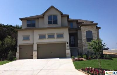New Braunfels TX Single Family Home For Sale: $466,381
