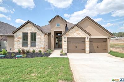 New Braunfels TX Single Family Home For Sale: $466,757
