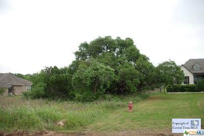 Residential Lots & Land For Sale: 236 Lowman