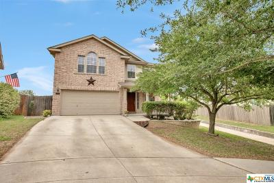 New Braunfels TX Single Family Home For Sale: $255,000