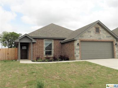 Bell County Single Family Home For Sale: 2701 Crystal Ann Drive