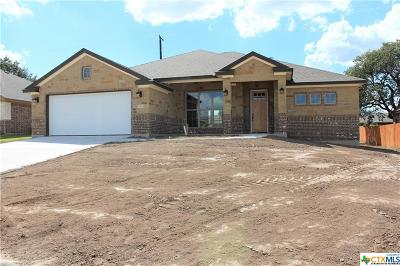 Belton Single Family Home For Sale: 2961 Mystic Mountain