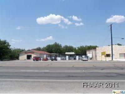 Commercial For Sale: 3511 E Veterans Memorial