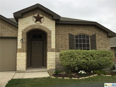 New Braunfels TX Single Family Home For Sale: $244,995