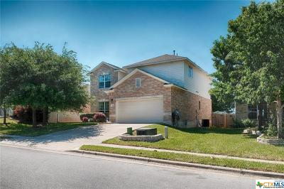 Round Rock Single Family Home For Sale: 3410 Shiraz Loop