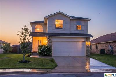New Braunfels Single Family Home For Sale: 785 Wolfeton Way