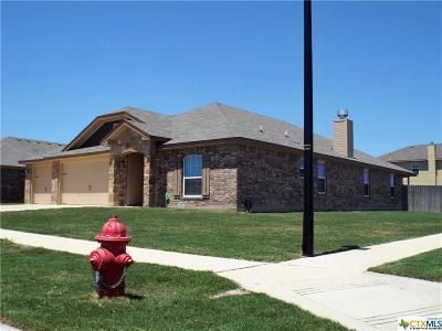 Killeen Single Family Home For Sale: 2501 Hector Drive