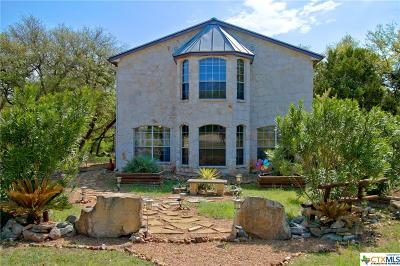 Canyon Lake Single Family Home For Sale: 850 La Paloma