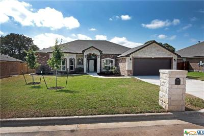 Belton Single Family Home For Sale: 2978 Presidio