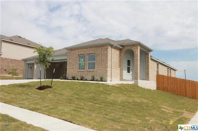 Killeen TX Single Family Home For Sale: $208,815