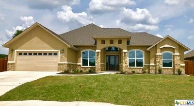 Seguin Single Family Home For Sale: 1241 Meadow Breeze