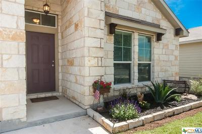 Seguin Single Family Home For Sale: 3431 Zachary
