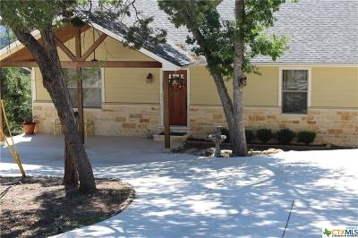 Canyon Lake Single Family Home For Sale: 1308 Springwater