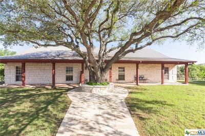 Salado Single Family Home For Sale: 5973 Wells