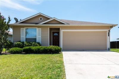 New Braunfels Single Family Home For Sale: 408 Brighten