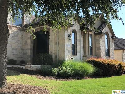 Austin Single Family Home For Sale: 14100 Avery Ranch Boulevard #1304