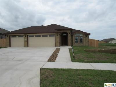 Killeen Single Family Home For Sale: 6100 Cactus Flower Drive