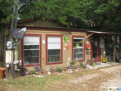 Belton Single Family Home For Sale: 7138 Ih 35