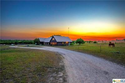 Guadalupe County Single Family Home For Sale: 900 Union Wine