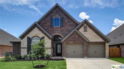 Seguin Single Family Home For Sale: 2924 Glen View