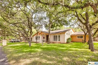 New Braunfels Single Family Home For Sale: 985 Fredericksburg Road