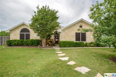 Salado Single Family Home For Sale: 108 Chelsea Circle