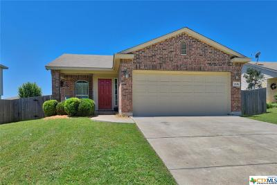 New Braunfels Single Family Home For Sale: 2436 Dimmitt